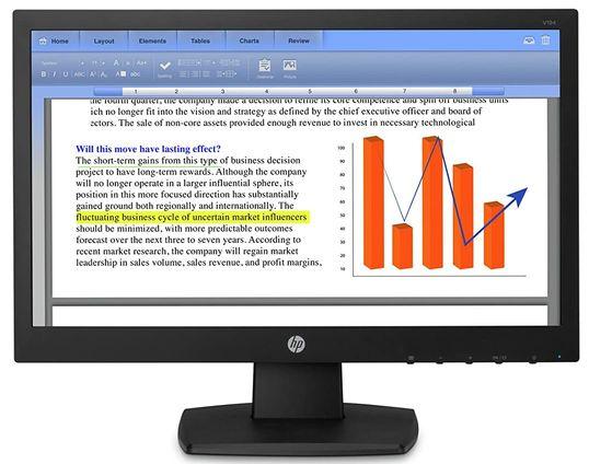 HP V194 Budget Monitor